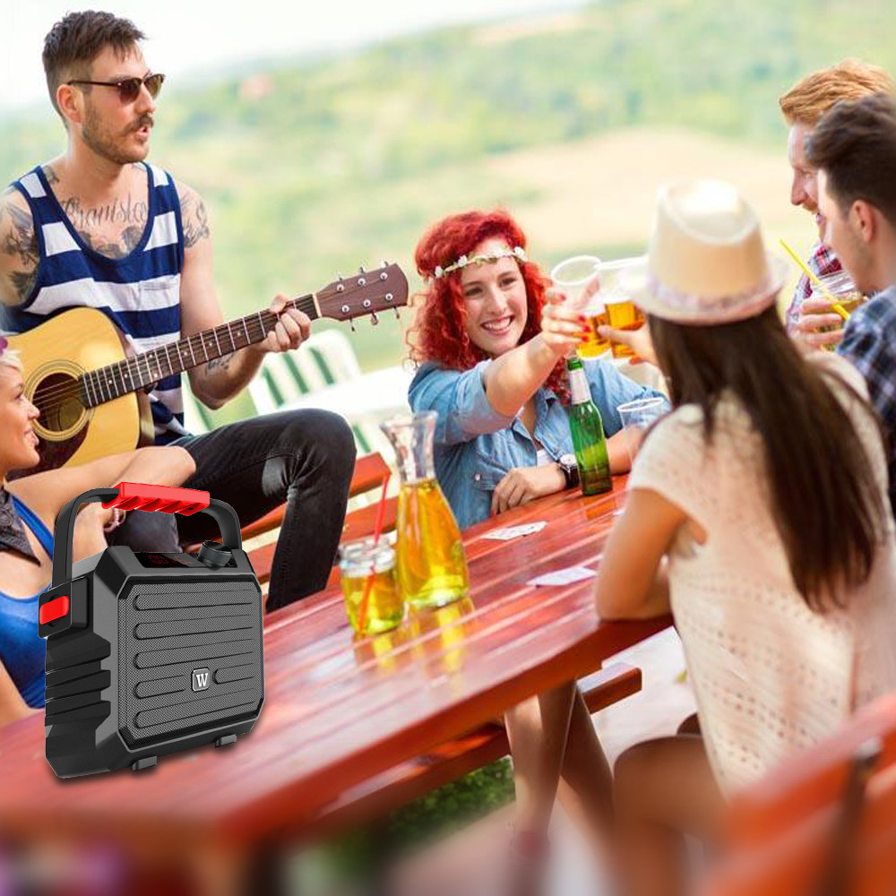 speaker karaoke microphone Bulk Buy outdoor Winbridge