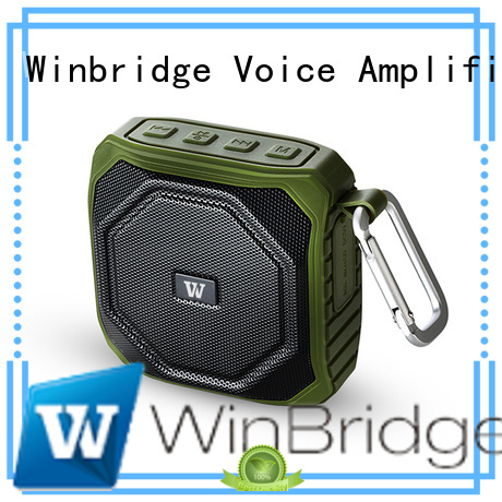 panel bluetooth speaker wireless Winbridge company