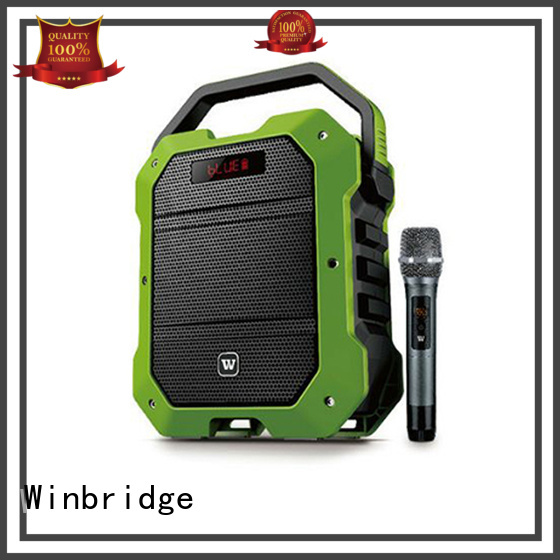 Winbridge Brand multifunction ergonomic speaker karaoke stylish supplier