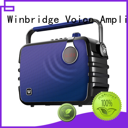 comfortable ergonomic stylish outdoor karaoke speaker Winbridge