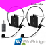 Quality Winbridge Brand mic wireless decent range system