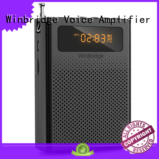 mini wired voice enhancer bluetooth Winbridge Brand company