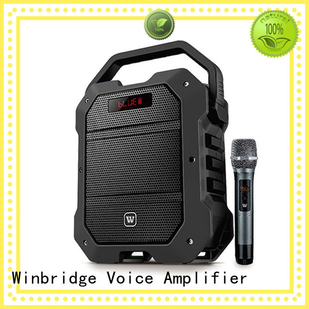 outdoor ergonomic multifunctional karaoke speaker wireless Winbridge