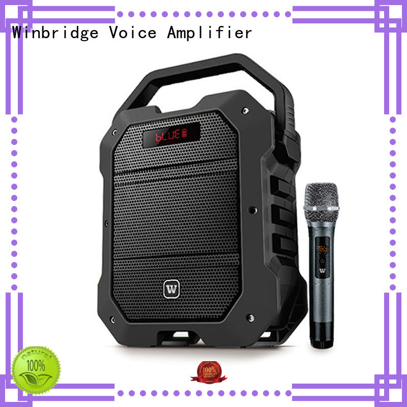 portable Custom wireless bluetooth karaoke speaker Winbridge winbridge